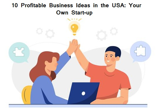 10 Profitable Business Ideas in the USA Your Own Startup